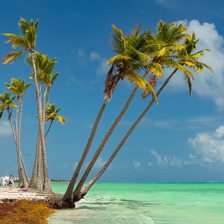 PuntaCana-JuanilloBeach-Shoreline-sq