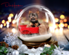 8x10 Twinkling Snow Globe-example-B-FB