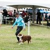 20161120_Greater Sierra Vista Kennel Club_Aussies-235