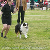 20161120_Greater Sierra Vista Kennel Club_Aussies-180