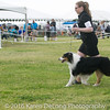 20161120_Greater Sierra Vista Kennel Club_Aussies-106
