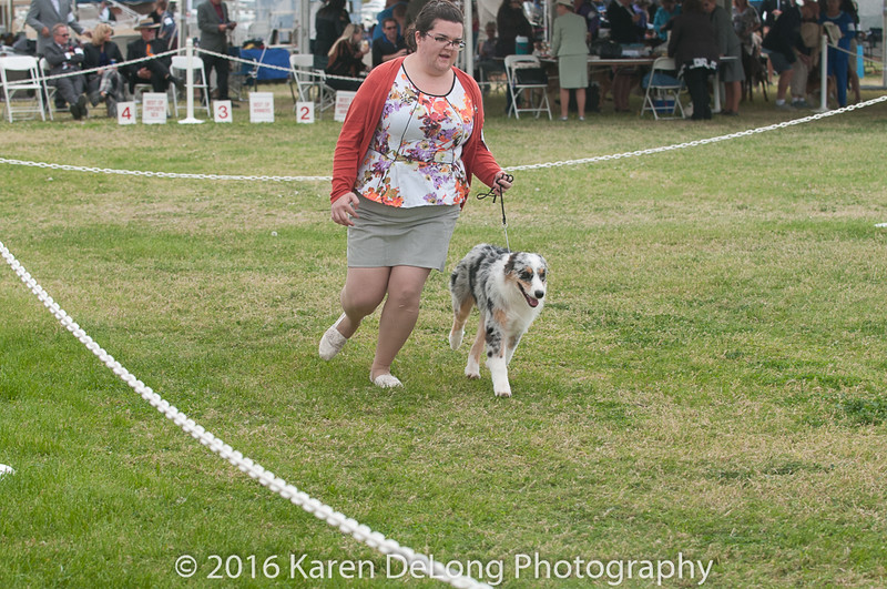 20161120_Greater Sierra Vista Kennel Club_Aussies-41