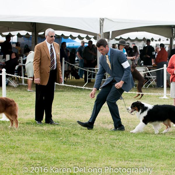 20161120_Greater Sierra Vista Kennel Club_Aussies-204