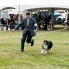 20161120_Greater Sierra Vista Kennel Club_Aussies-361