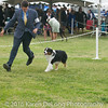 20161120_Greater Sierra Vista Kennel Club_Aussies-52