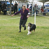 20161120_Greater Sierra Vista Kennel Club_Aussies-249