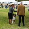 20161120_Greater Sierra Vista Kennel Club_Aussies-139