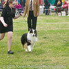 20161120_Greater Sierra Vista Kennel Club_Aussies-179
