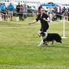 20161120_Greater Sierra Vista Kennel Club_Aussies-123