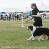 20161120_Greater Sierra Vista Kennel Club_Aussies-105