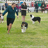 20161120_Greater Sierra Vista Kennel Club_Aussies-184