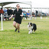 20161120_Greater Sierra Vista Kennel Club_Aussies-100