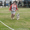 20161120_Greater Sierra Vista Kennel Club_Aussies-39