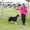20161120_Greater Sierra Vista Kennel Club_Aussies-116