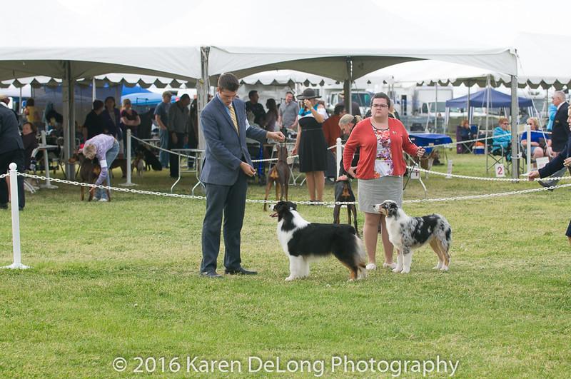 20161120_Greater Sierra Vista Kennel Club_Aussies-193