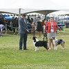 20161120_Greater Sierra Vista Kennel Club_Aussies-193