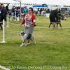20161120_Greater Sierra Vista Kennel Club_Aussies-10