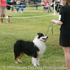 20161120_Greater Sierra Vista Kennel Club_Aussies-109