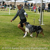 20161120_Greater Sierra Vista Kennel Club_Aussies-132