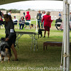 20161120_Greater Sierra Vista Kennel Club_Aussies-131