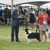 20161120_Greater Sierra Vista Kennel Club_Aussies-194