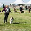 20161119_Tucson Kennel Club_Aussies-117