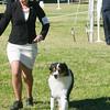 20161119_Tucson Kennel Club_Aussies-118