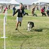 20161119_Tucson Kennel Club_Aussies-120