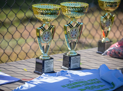 2016 Joe Halm Memorial City Cross Country Championships