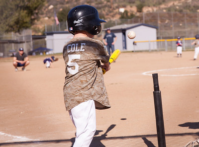 Alpine_American_Tee_Ball1-2-19