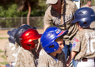 Alpine_American_Tee_Ball1-8539