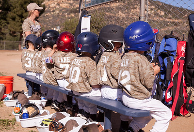 Alpine_American_Tee_Ball1-3-2