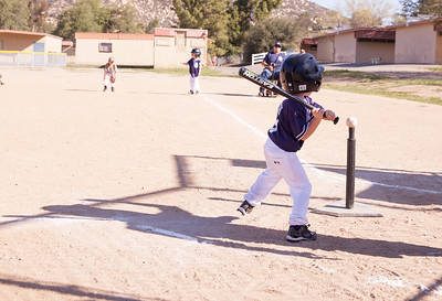 Alpine_American_Tee_Ball1-2-14