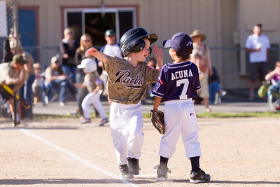 Alpine_American_Tee_Ball1-8264