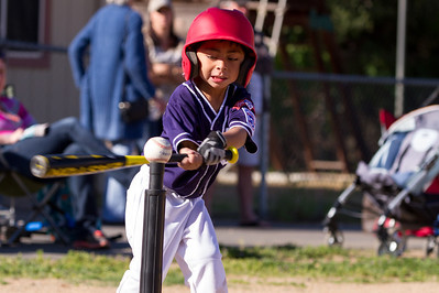 Alpine_American_Tee_Ball1-8396