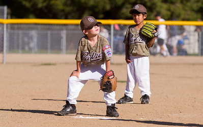 Alpine_American_Tee_Ball1-8372