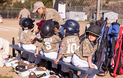 Alpine_American_Tee_Ball1-2-2