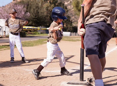 Alpine_American_Tee_Ball1-3