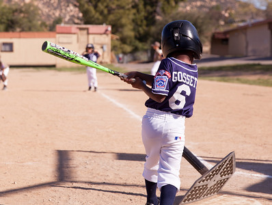 Alpine_American_Tee_Ball1-2-15