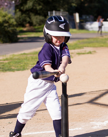 Alpine_American_Tee_Ball1-8355
