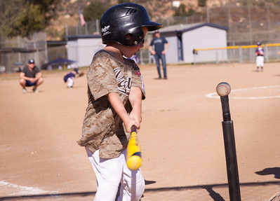 Alpine_American_Tee_Ball1-3-3