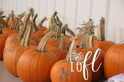 Halloween Fest 004