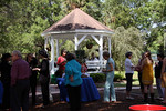 Tea Party in Fred Ball Park