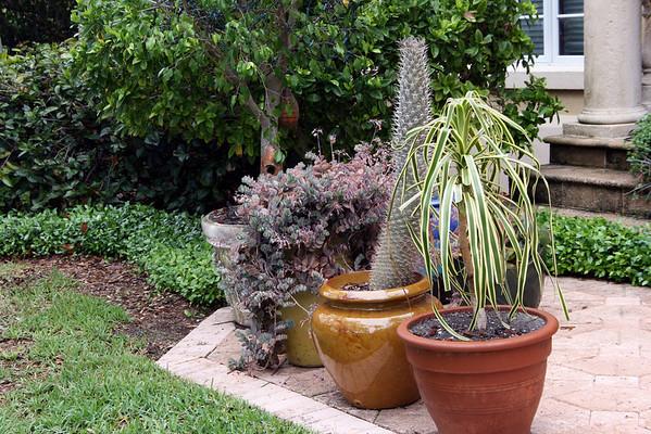 The Garden of Elaine and Bob Engleman