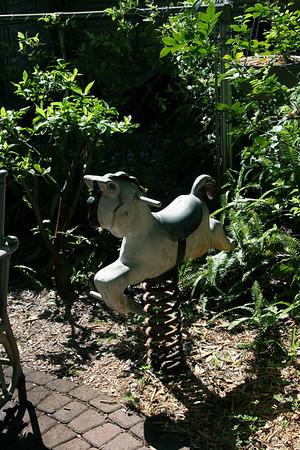 The Garden of Derald Gingerich