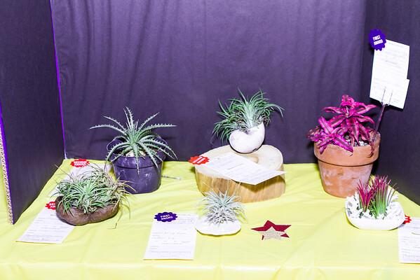 20151113 Flower Show 029