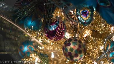 Christmas 2012 Main Street St Charles-4015