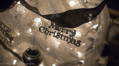 Christmas 2012 Main Street St Charles-4012