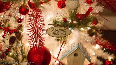 Christmas 2012 Main Street St Charles-4008