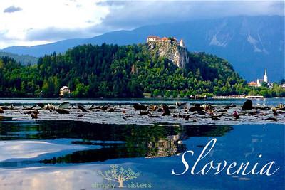 Slovenia+8x8copy
